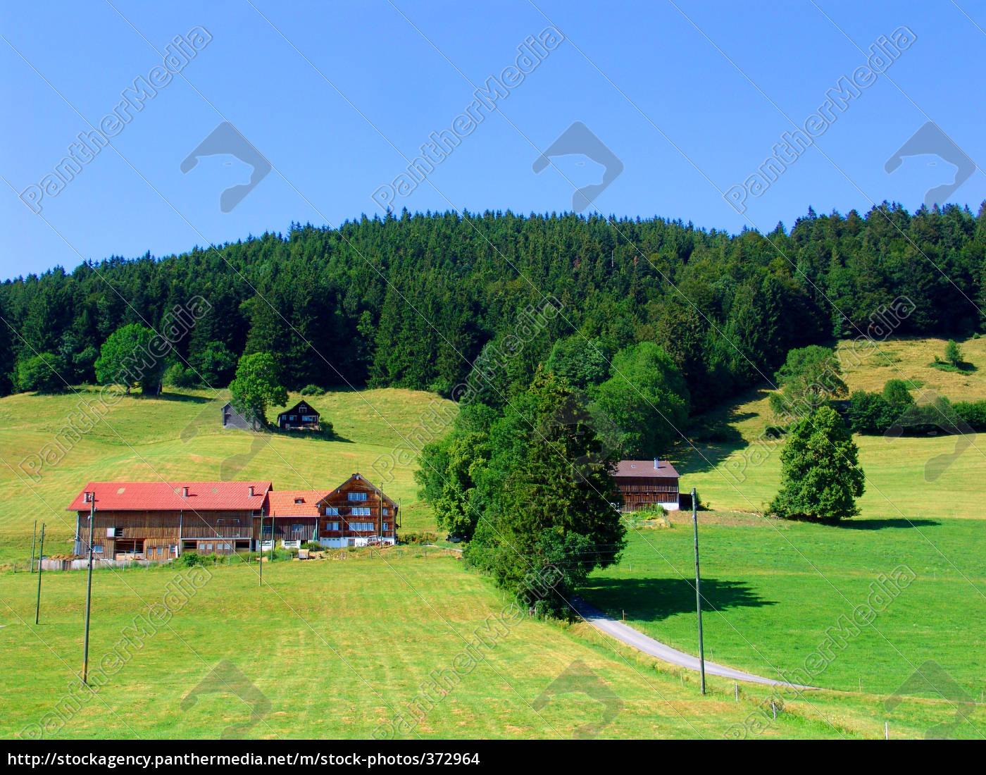 appenzeller, land - 372964