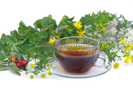 tee kraeuter tea herbal 01