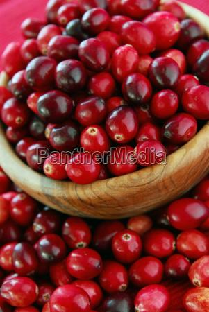 cranberries in einer schale