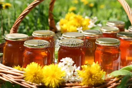 frischer honig in kleinen glaesern