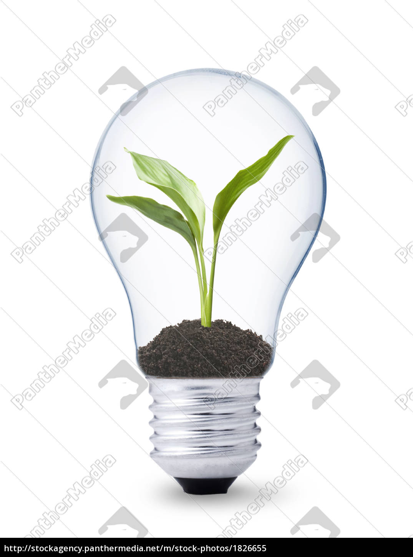 erneuerbare, energie - 1826655