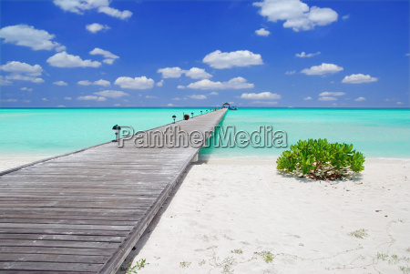 jetty auf den malediven