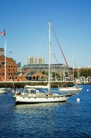 sailboats in the river boston massachusetts
