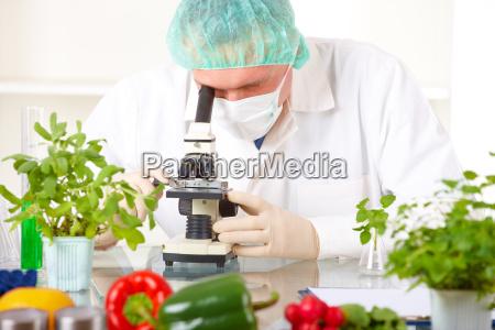 forscher, der, ein, gvo-gemüse, im, labor - 4326987