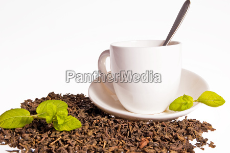 tee trinken trinkend trinkt getraenk frucht