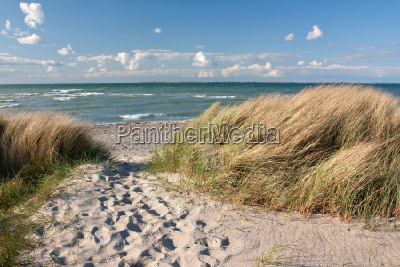 weg, zum, strand, durch, dünen, an - 7103675