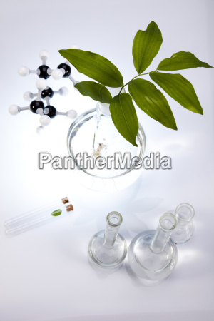 working in a laboratory and plants