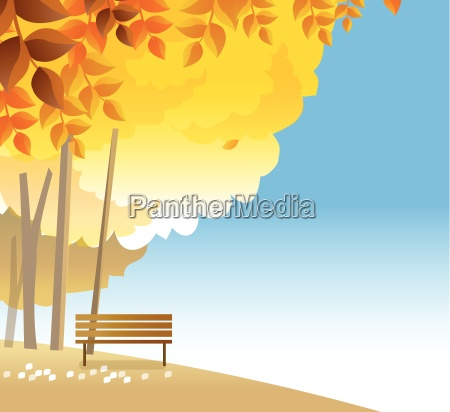 wooden bench on hilltop