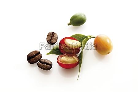 still life food aliment coffee coffee