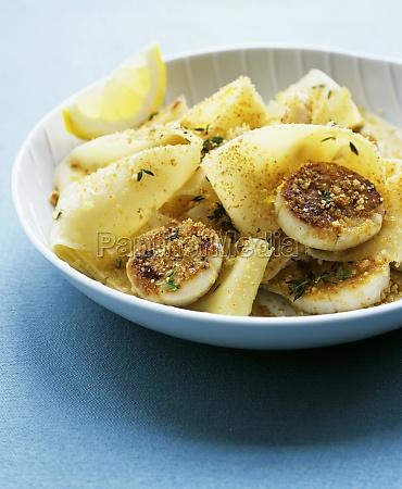 blue food aliment colour mollusc series