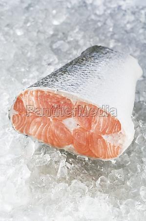 essen nahrungsmittel lebensmittel nahrung angeln fischen