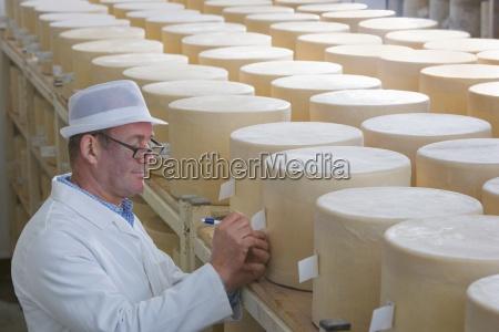 inspector pruefen junge farmhouse cheddar kaese