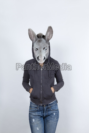 donkey wearing a hoodies