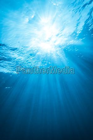 echtlichtstrahl von unterwasser