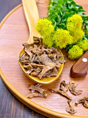 root dry of rhodiola rosea with