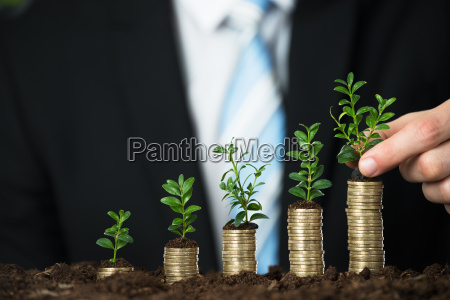 businessperson hand holding small plant on