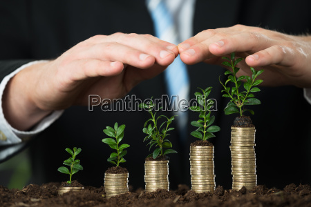 businessperson hand protecting small plant on