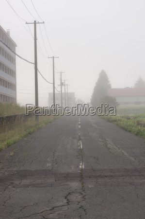 foggy moring road