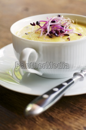 soup with potatoes cauliflower and carrots