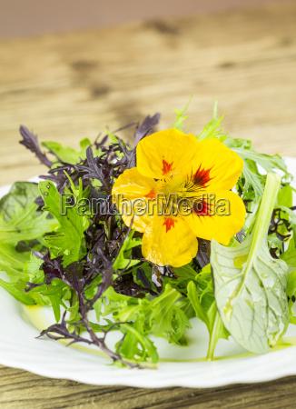 salad made of wild herbs garnished