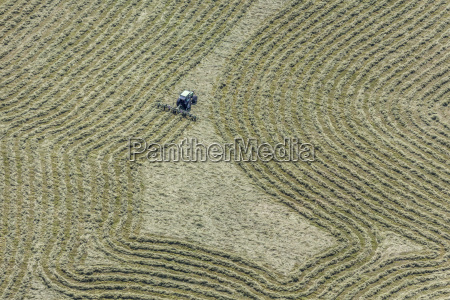 hay tedder on field with hay