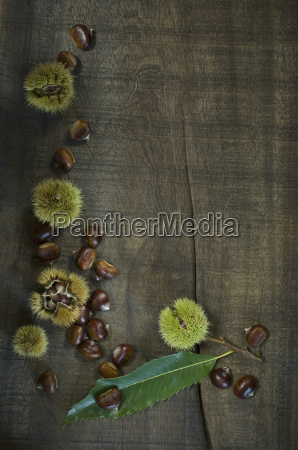 leaf and sweet chestnuts on dark