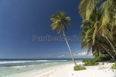 carribean dominican republic beach on the