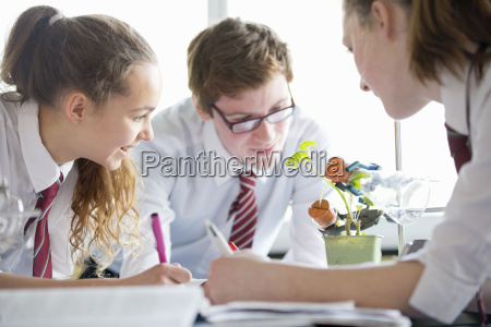 high school students conducting scientific experiment