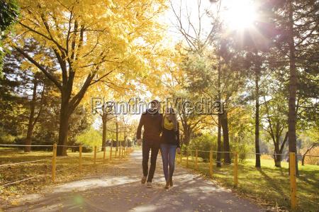 junges paar im herbst park spazierenwienoesterreich