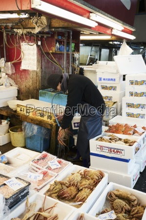 crustaceans at the tsukiji fish market