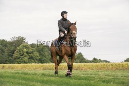man reitet auf einem buchtthoroughbred pferd
