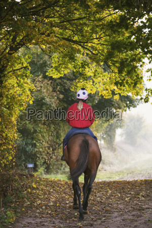 frau frauen sport weiblich baum pferd