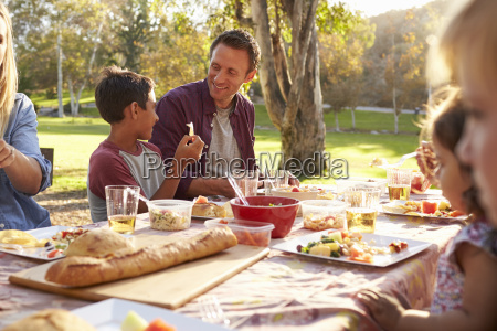 two families having a picnic at