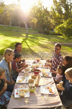 two families having picnic at a