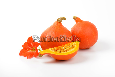 orange pumpkins and hibiscus flower