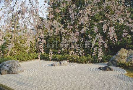 taizosteingarten im tempelkyotojapanasien