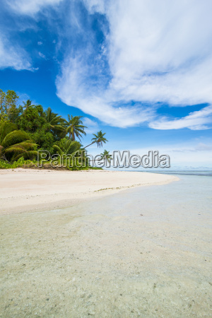 white sand beach and turquoise water