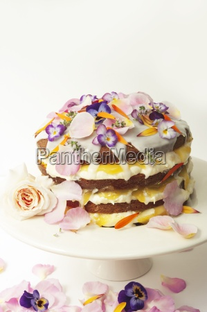 layered lemon drizzle cake decorated with