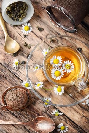 herbal tea with fresh chamomile flowers
