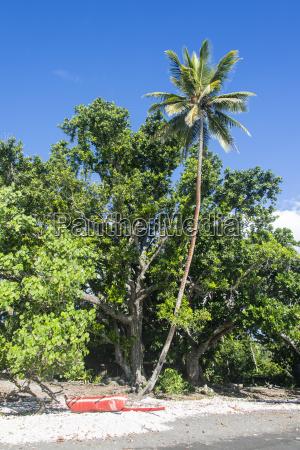 epi island shepherd islands vanuatu pacific